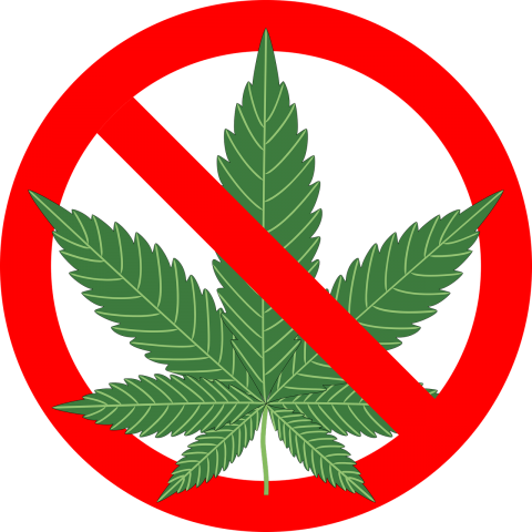Marihuana skutki